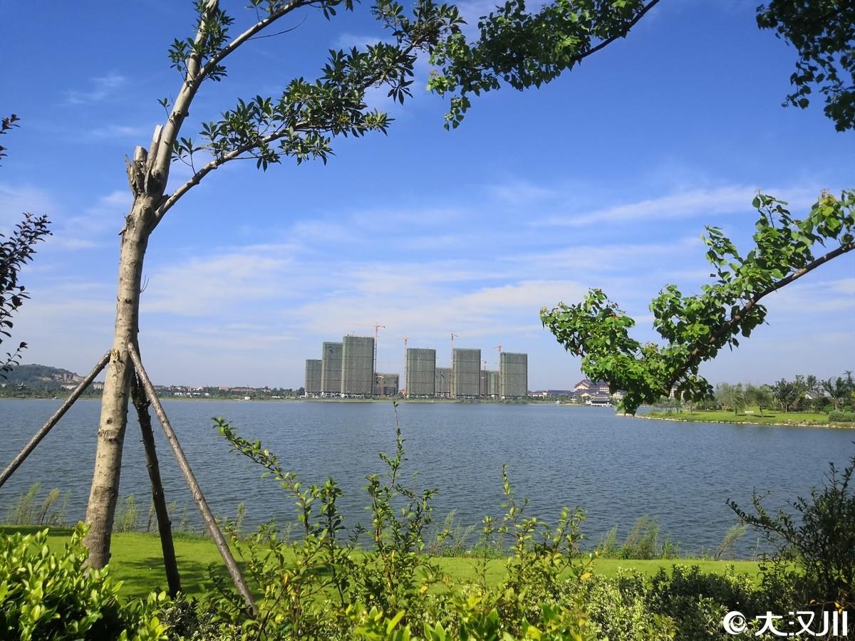 天屿湖之夏.jpg
