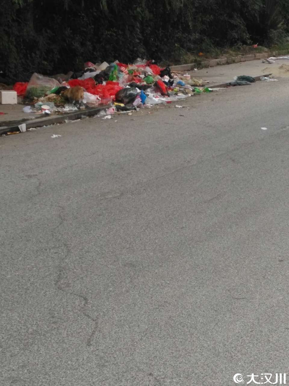 新汉都西门(洪西渠旁)垃圾成堆